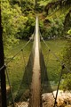 Otaki Forks swingbridge