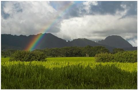 Kauai Poipu Rainbow 75