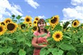 Sunflower_Farm