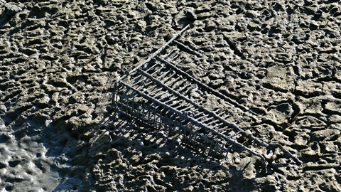 Lost-My-Shopping-Cart