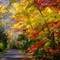 Fall Foliage selections__DSF0152_