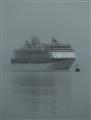 Ship Fog