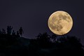 We were taking landscapes at Griffith Park in LA, CA USA, I saw this moon rising at a distant ridge with hikers taking pictures of the event.