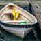 Row boat with yellow oars: Row boat with yellow oars