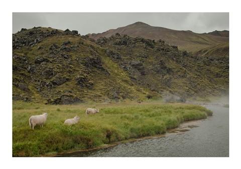 Iceland-220148-B