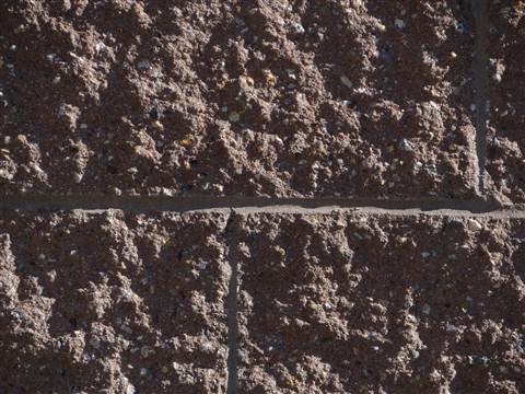 DSC01335 79.48 mm