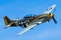 Propellor. Pilot. Plane.........P-51