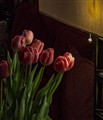 Tulips with Lamp