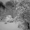 Frosting: Voigtländer Ultron 28mm f/1.9 (LTM)