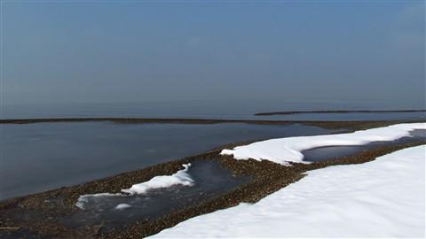 2013-01-18 GSL Wetlands 223