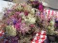 Flowers @ Market