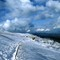 a winterwalk in the Vosges