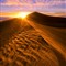 Starburst-Sand-Dune2