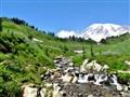 Mount Rainier and Myrtle Creek