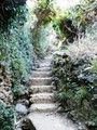 Cinque Terre Stairs