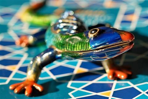 Enamel Lizard