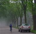 A Morning Stroll on a Bike