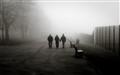 Foggy Park Scene