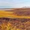 MM.Tundra.Alaska