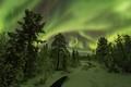 Lapland night