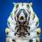 Eastern Black Swallowtail Larvae - AKA Caterpillar
