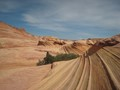 Coyote Buttes North.The Wave 2