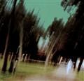 Ghostly Park