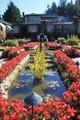 Butchart's Gardens- Italian Garden