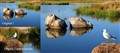 Cairnlea_Lake