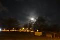 Moonlight versus tungsten