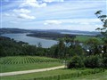 River - Tamar Valley, Tasmania