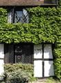 Historic Rye, England