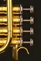 wind instruments Trumpet