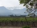 Aquitania, Santiago Chile
