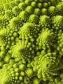 Romanesco Green Fractals