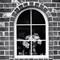Window | Englewood, CO | August, 2017
