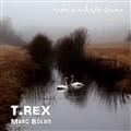 ride a white swan - T.REX Marc Bolan