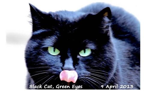 Black Cat Green eyes_edited-2