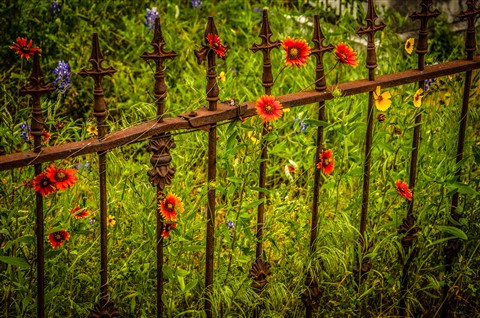 fence in cemetery