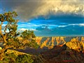 Grand canyon, North rim,Arizona