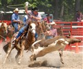 Wellsville, PA Rodeo