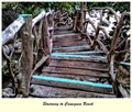 Stairway to Camiguin Beach
