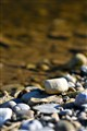 Streamside pebbles