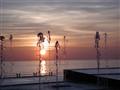 Fresh Sunset