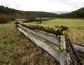 Montana Fence