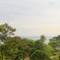 New Panorama11x