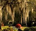 Cypress gardens Winterhaven Fl