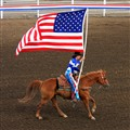 Flag at Rodeo