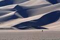 Dunes Walker