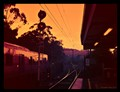 Golden sunrise railway